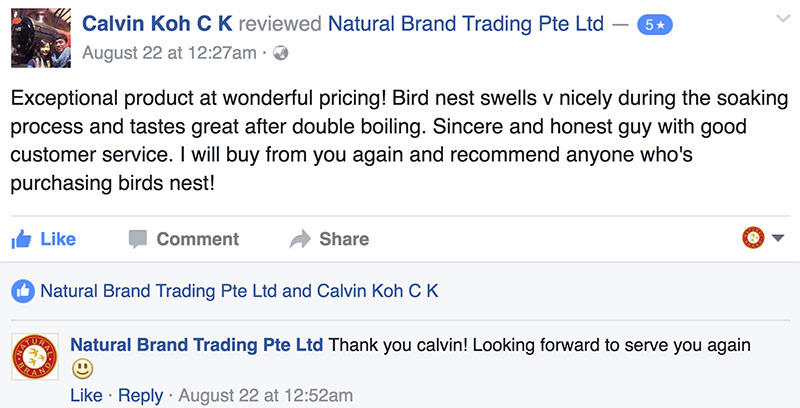bird-nest-review-3