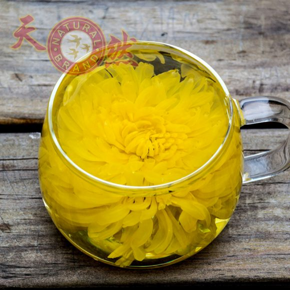 Chrysanthemum-Cup